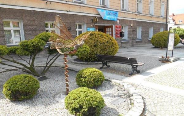 okrągłe krzewy przed budynkiem